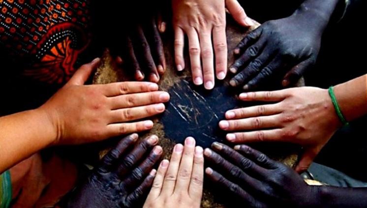 Destaque étnico racial